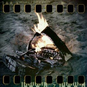 Eld på stranden i sommarnatten